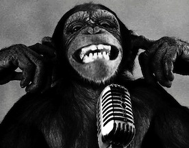 eq 300 microphone equalizer